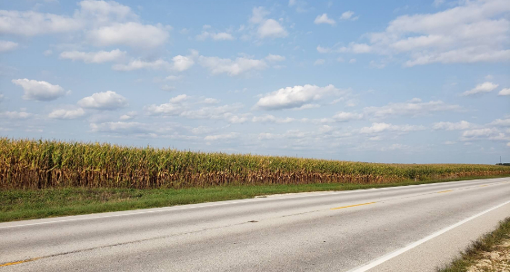 Land Auction – 246.27 Surveyed Acres – 1 Tract – Henderson County, IL (Deer Crest)