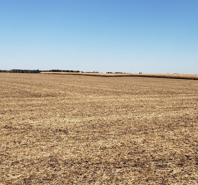 Land Auction – 141.19 Surveyed Acres – 2 Tracts – Productive Cropland – Warren County, IL