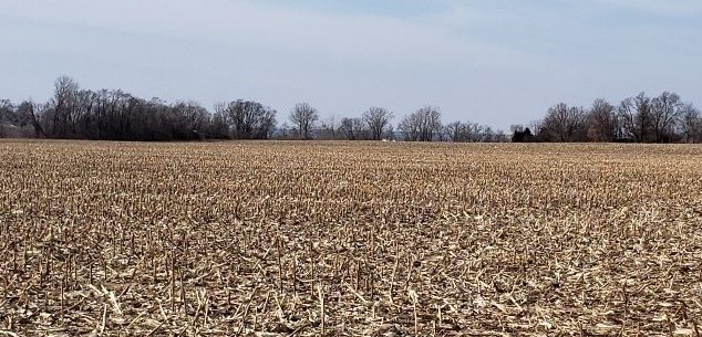 Real Estate Auction – 341.58 Surveyed Acres – 3 Tracts – Henderson County, IL
