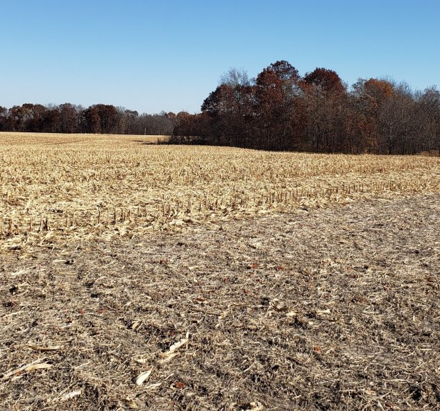 Land Auction – 246.58 Surveyed Acres – 3 Tracts – Productive Farmland – Country Home – Timber – Grassland – Fulton County, IL
