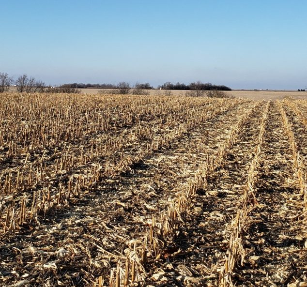 Land Auction – 315.78 Surveyed Acres – 3 Tracts in Warren County, IL