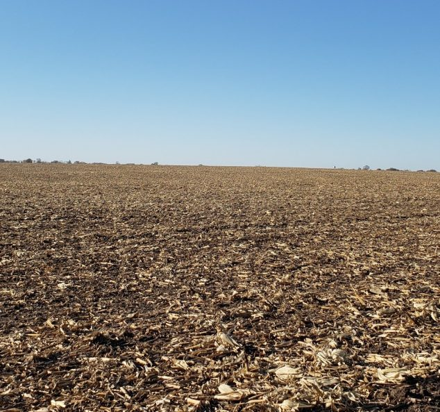 Land Auction – 165.70 Surveyed Acres – 2 Tracts – Highly Productive Cropland – McDonough & Warren County, IL
