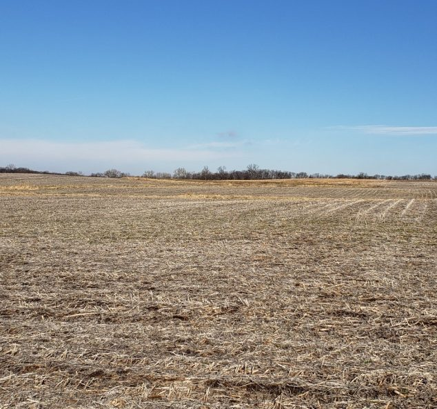 Real Estate Auction – 189.18 Surveyed Acres – 3 Tracts in Henderson County, Illinois