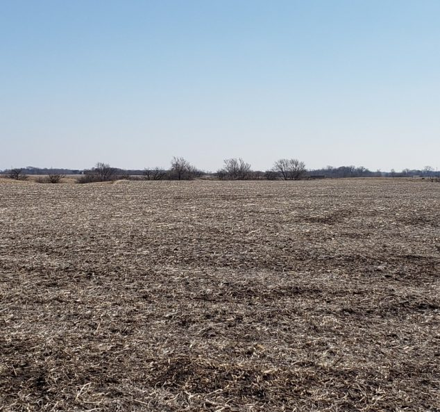 Land Auction – 154.68 Surveyed Acres in 3 Tracts, Warren County, IL